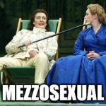 Mezzosexual
